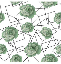 Seamless pattern with succulents and frames vector