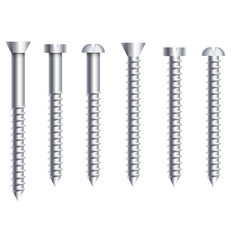 socket cap or round head bolts and nuts side view vector image