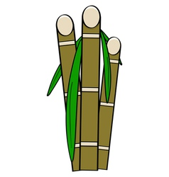Sugar cane vector