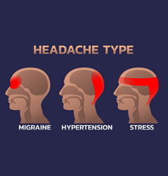 types of headaches infographics design template vector image