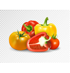 photo-realistic red tomato and paprika vector image