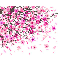 cherry blossoms wall sticker vector image