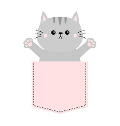 gray cat in pink pocket holding hands up give me vector image