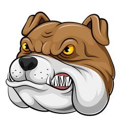Head an bulldog cartoon vector