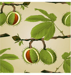 Seamless texture chestnut tree conkers vector
