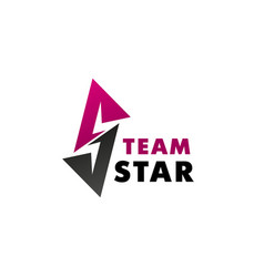 star team creative badge vector image