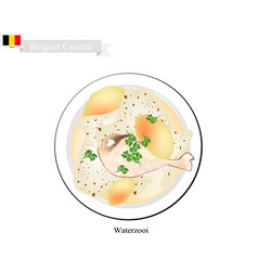 waterzooi or belgian creamy soup with chicken vector image