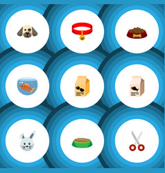 flat icon animal set of kitty collar nutrition vector image vector image