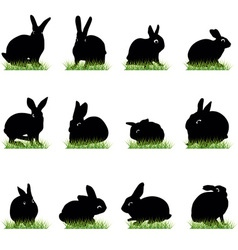 rabbits3 vector image vector image