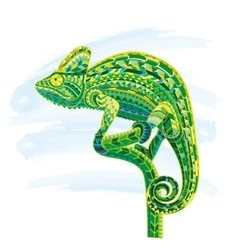 Hand drawn colored doodle outline chameleon vector