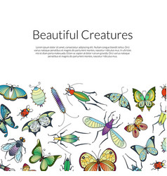hand drawn insects background banner poster vector image
