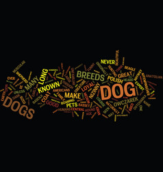 lesser known dog breeds text background word vector image