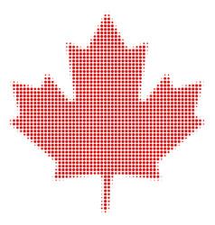 maple leaf halftone icon vector image