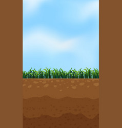 Nature above and underground vector