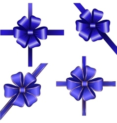 Sset of blue gift bows with ribbons vector image