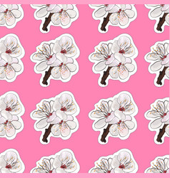 Blooming apricot seamless background vector
