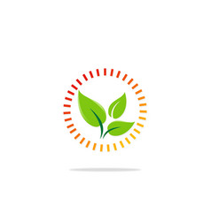 green leaf organic protection logo vector image