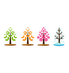 four season tree vector image