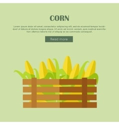 Corn Web Banner in Flat Style Design vector