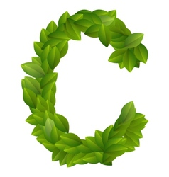 Letter C of green leaves alphabet vector image