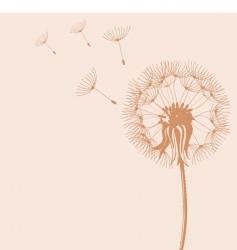 blow dandelions vector image