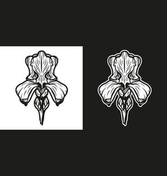 Black and white iris flower vector