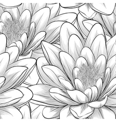 black and white seamless pattern with lotus flower vector image