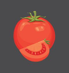 fresh organic red tomato healthy ripe plant vector image
