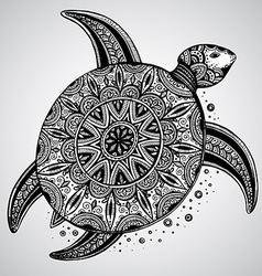 Hand drawn monochrome doodle turtle decorated with vector image