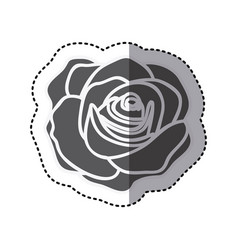 contour rose with oval petals and leaves icon vector image vector image