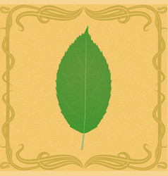 apple leaf on vintage background vector image