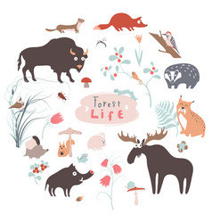 Cute forest animals set for kid prints vector