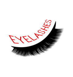 eyelash extension logo and vector image