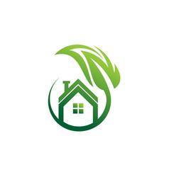 leaf home logo template vector image