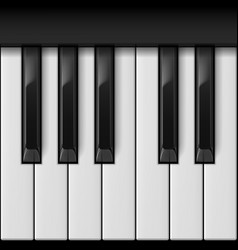 piano keys cool for creative design vector image