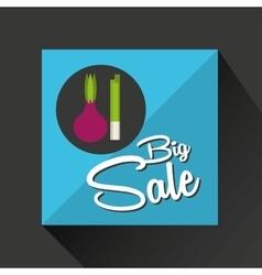 Big sale concept onion fresh chives vector