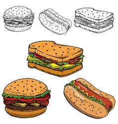 hamburger sandwich hot dog hand drawn isolated on vector image
