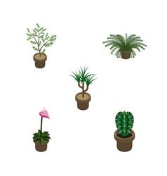 Isometric houseplant set of houseplant plant vector