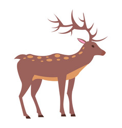 Male deer view from left isolated vector