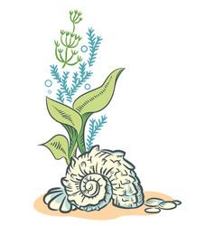 sea shells algae hand drawn sketch style vector image