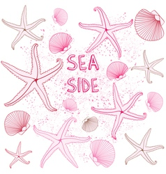 Seaside Seashells background vector image vector image