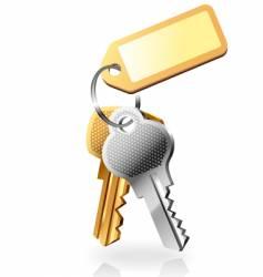 two keys vector image
