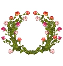 Wreath of roses isolated EPS 10 vector image