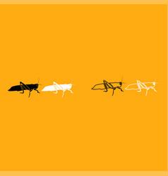 grasshoper it is white icon vector image
