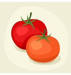 Stylized of fresh ripe tomatoes vector image vector image