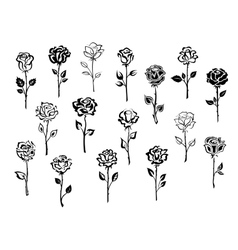 Set of rose icons vector image