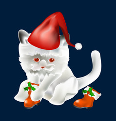 Christmas cat with hat and boots icon symbol vector