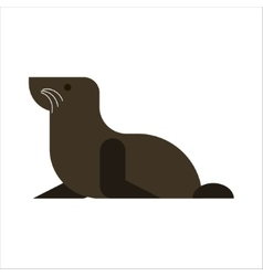 Fur seal isolated on white background Sea lion vector