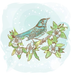 background spring bird vector image