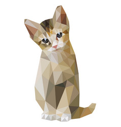 brown cat sitting low polygon t-shirt graphic vector image
